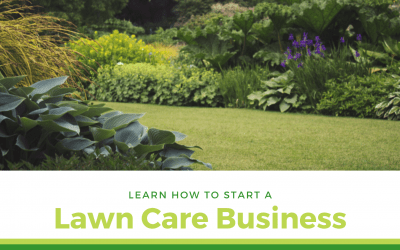 How To Start A Lawn Care Business In 2020