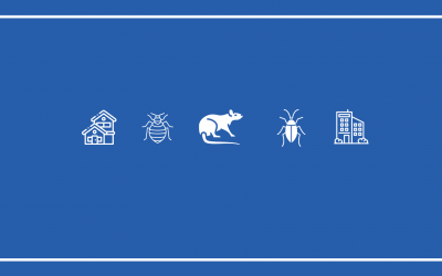 How To Start A Pest Control Business In 2020