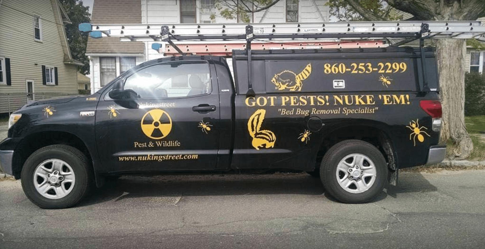 Nukingstreet Pest & Wildlife Control