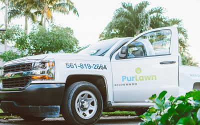 PurLawn Lawn Services