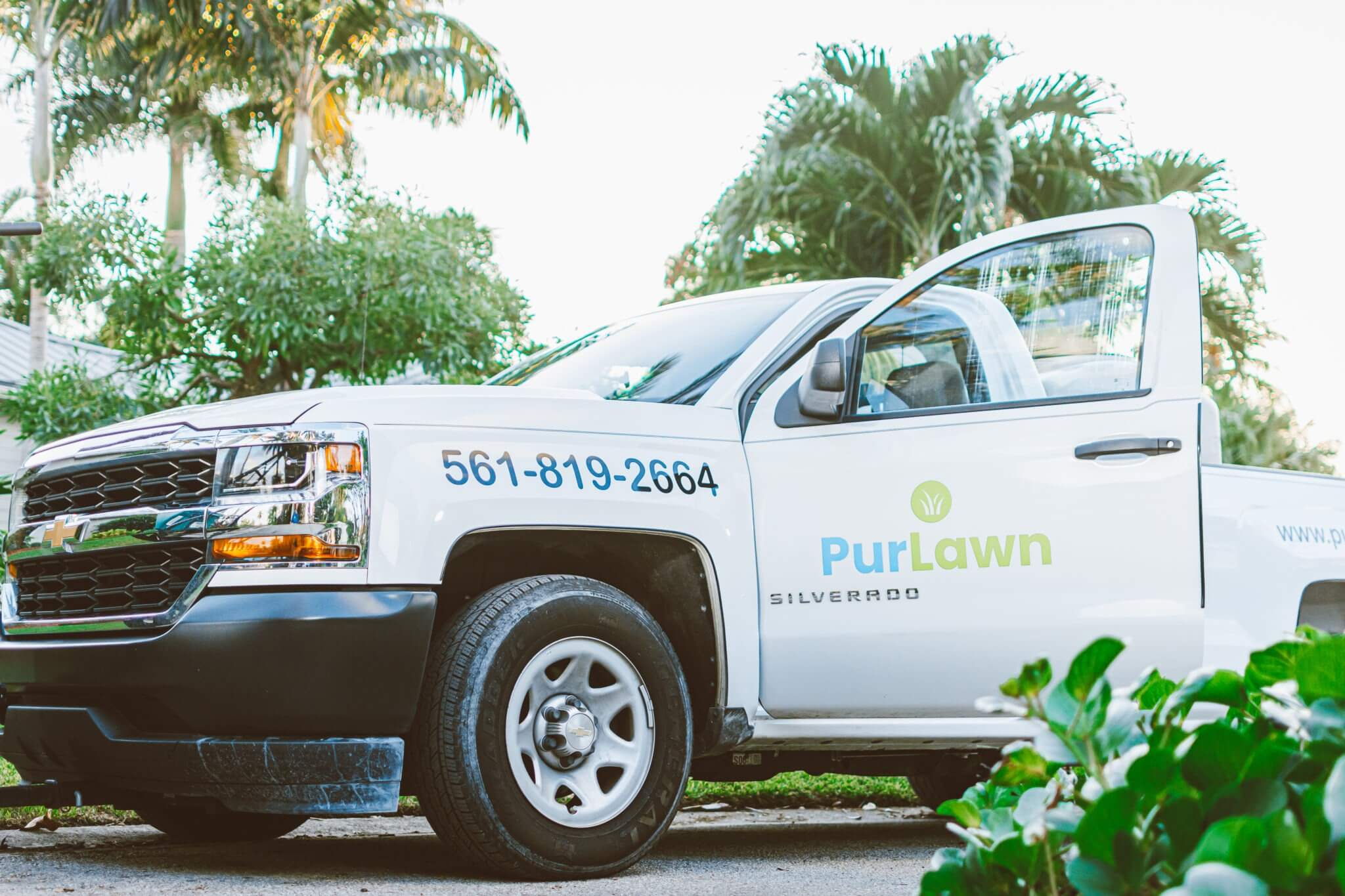 PurLawn - Lawn Care Success Stories